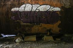 Tag (pasa47) Tags: eaststlouis illinois unitedstates armourmeatpackingplant 2014 august stlouis eastside metroeast urbex urbanexploring decay exploration summer abandoned stl