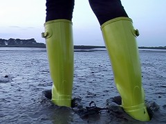 Yellow Hunter wellies take their first steps into the tidal mud (essex_mud_explorer) Tags: yellow creek mud boots rubber estuary wellington gloss hunter wellingtonboots welly wellies tidal muddy rubberboots wellingtons tidalmud hunterwellies rubberlaarzen hunterboots estuarymud