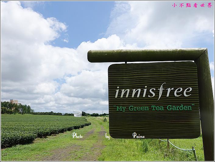 濟州島innisfree館 綠茶博物館 (65).JPG