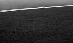 Sencillez al Caminar (Amaliel Ramos) Tags: blackandwhite white black blancoynegro blanco persona foto carretera guatemala negro ramos maraton madrugada correr fotografa siembra trotar amaliel andadura