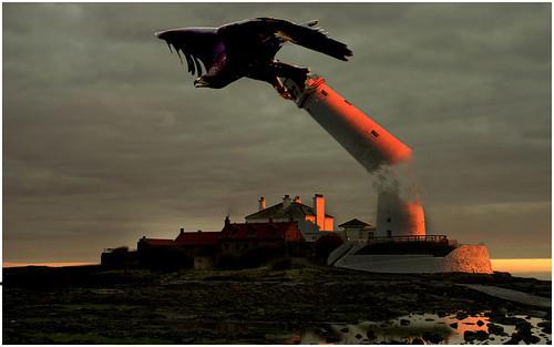 St Mary's Island; revenge of the rather large eagle?