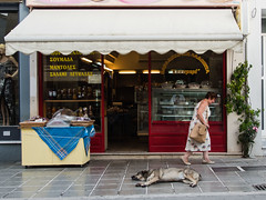 Tired dog (Tom Ort) Tags: street sleeping dog shop lens four town republic czech zoom olympus third tomas mirco 43 omd ort lefkada mft 1250mm em5 f3563 mzuiko