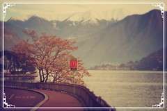 mountains autumn lake mcdonalds (_AR_T_) Tags: road travel autumn trees summer italy lake holiday como mountains art fall canon way hope sadness sad bokeh path indian mcdonalds september route nostalgia journey traveling melancholy sorrow homesickness