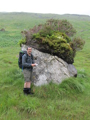 Hundreds of years of plant colonisation on an erratic