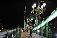 Ponte delle Libert (Szabadsg hd) Budapest (Massimo Carradori) Tags: travel bridge panorama night river landscape lights hungary fiume budapest tourist ponte luci viaggio notte danube turista ungheria danubio massimocarradori carradorimassimo