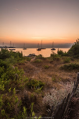 DSC_5145 (SG Photos06) Tags: mer landscape cannes paysage levdesoleil moine mditranne sainthonorat ilesdelrins