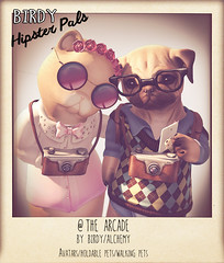Hipster Pals Poster - Arcade (Dani @ Birdy/Foxes/Alchemy) Tags: pet cat poster mesh avatar arcade hipster kitty pug sl event secondlife fox frenchie birdy alchemy gacha