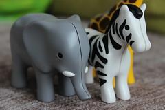 Jungle. (mcginley2012) Tags: elephant macro closeup toys plastic jungle zebra giraffe toyanimals macromondays
