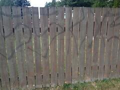 SOUTH SIDE KINGS 13 (northwestgangs) Tags: graffiti kings mountvernon gangs sur13 surenos13 southsidekings