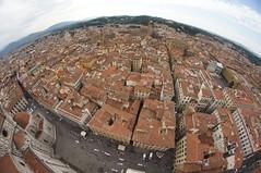 ber  den Dchern  von Florenz (violalantana) Tags: italien dom fisheye firenze duomo florenz toskana giotto sommertag piazzasangiovanni 414stufen