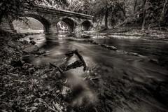 Chickies Creek