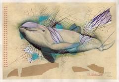45x68_Die letzten 300 (heiko ELIAS friedrich) Tags: collage elias grafik heiko friedrich zeichnung realismus gegenstndlich