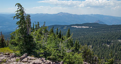 Mountain View - Grey Butte - Shasta - Trinity National Forest - Siskiyou County - California - 17 August 2014 (goatlockerguns) Tags: california county usa mountain mountains west nature forest grey butte view natural pacific northwest unitedstatesofamerica mount national trinity shasta siskiyou