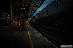 CreweRailStation2016.10.22-49 (Robert Mann MA Photography) Tags: crewerailstation crewestation crewe cheshire station trainstation trainstations train trains railway railways railwaystation railwaystations railstations railstation virgintrains virgintrainspendolino class390 class390pendolino pendolino northern northernrail class323 eastmidlandstrains class153 class350 desiro class350desiro arrivatrainswales class158 towns town towncentre crewetowncentre architecture nightscapes nightscape 2016 autumn saturday 22ndoctober2016 londonmidland