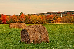 Fall Hay Bales (Eyes Open To Life) Tags: fall autumn landscape nature hay bales churchsteeple woods grass trees leaves colorful vermont williston