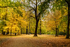 Schlosspark Charlottenburg (Pixelfinder Berlin) Tags: baum berlin blumenundpflanzen deutschland farbenpracht garten germany herbst hohelandschaft park schlosscharlottenburg schlosspark schlossparkcharlottenburg allemagne autum tree trees bäume