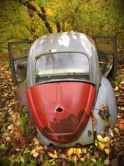 Bad Beetle (_ThePicture_) Tags: explore automobile vw abandoned rust beetle iphone