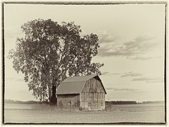 Happy Slider Sunday (Sue90ca Falling Behind. More Off Than On Lately) Tags: canon 6d slidersunday barn tree toned hss