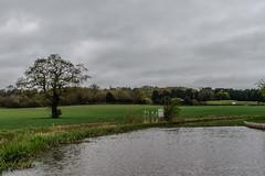 Caldecote Hill on a grey day (hilofoz) Tags: camphill warwickshire england uk