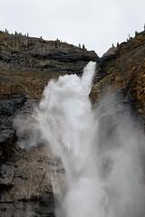 Exploding Water (Patricia Henschen) Tags: yoho nationalpark canada field mountains waterfall rocky northern rockies takakkaw falls park parks parcs britishcolumbia mountain glacier glaciers daly waputik icefield