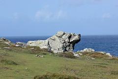 Dog Rock! (RiverCrouchWalker) Tags: dogrock southwestway coastpath coast stives cornwall sea sky grass clifftop rocks rockformation