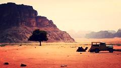 Wadi Rum, Jordan (LarrynJill) Tags: travel 2014 jordanandcyprusvacation jordan wadirum camel desert middleeast vacation sand travelling nikon coolpix adventure nature
