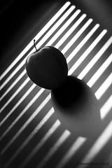 IMG_8583 Pomme Vnicienne (Pierrokaphoto) Tags: contrejour nb pomme store