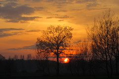 Miracle of Mother Nature - makes my day every time, over and over again! (despinkamer) Tags: zonsondergang sunset evening falling avondrood