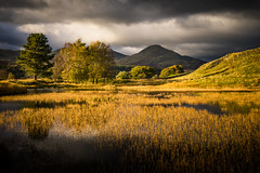 The tarn (semitune) Tags: tarn pond reflection landscape lake district uk sony semitune sunset