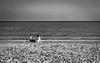 PA300033.jpg (francis_bellin) Tags: mer bouchesdurhône octobre merméditerranée 2016 seul piquenique lessaintesmariesdelamer bouchesdurhã´ne mermã©diterranã©e