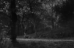 _T9A4143mv (ihynynen) Tags: streetpohtography photograph urban people blackandwhite monocrome
