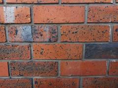 Anglų lietuvių žodynas. Žodis brick reiškia 1. n 1) plyta; gold brick amer.apgaulė; to sell a gold brick apgauti; to drop a brick pasielgti netaktiškai; 2) šnek. puikus, šaunus žmogus; 2. v kloti plytomis, grįsti; mūryti; to brick up užmūryti lietuviškai.
