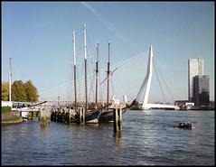 Rollie goes Rotterdam (19) (Hans Kerensky) Tags: rollei rolleiflex t model 3 tlr tessar 135 75mm lens fuji fujifilm reala 100 film scanner plustek opticfilm 120 rotterdam october river nieuwe maas veerhaven sail ships