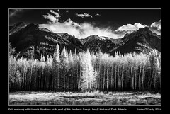 Fall morning at Hillsdale Meadows with part of the Sawback Range, Banff National Park, Alberta (kgogrady) Tags: fall infrared landscape banff alberta canada westerncanada xpro1 xf18135mmf3556oiswr fujinon fujifilm fujifilmxpro1 blackandwhite banffnationalpark bowvalleyparkway canadianlandscapes blackwhite canadianrockies autumn cans2s 2016 bw canadianrockieslanscape canadianmountains canadiannationalparks ab hillsdalemeadows trees sawbackrange sunny mountains mountainrange parkscanada nopeople noone