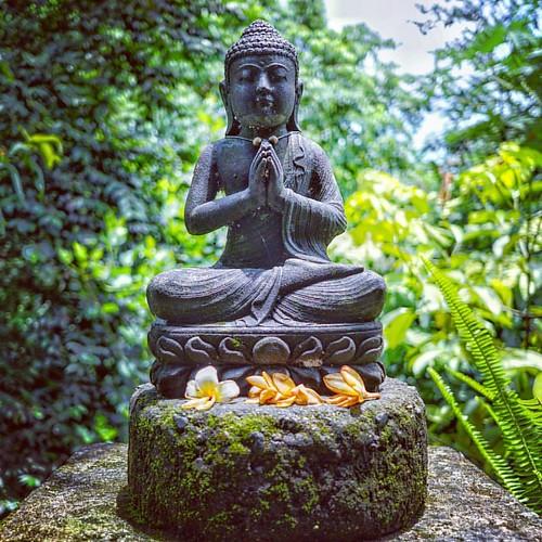 仏陀は、既にひとりひとりの中におられる。