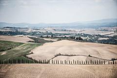 TuscanyUmbria-1035