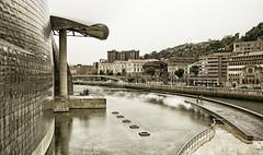 Bilbao (Luis_mail) Tags: bilbao museo guggenheim museoguggenheim blackandwhite monocrome lluvia rain travel art arquitecture