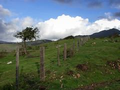 El Sur Ranch from the Old Coast Road, 2003 (adamkmyers) Tags: elsurranch oldcoastroad bigsur pch