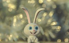 Rabbit-7039-2 (EbE_inspiration) Tags: christmas rabbit bokeh d7100 depthoffield dof white nikon macro