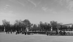 Hivernales Tuileries (.urbanman.) Tags: tuileries paris parc automne hiver dnud calme bassin promeneurs