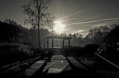 Shadows (I line photography) Tags: shadows pergola trees silhouette sunset blackandwhite