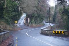 DSC_2221 (seustace2003) Tags: baile átha cliath ireland irlanda ierland irlande dublino dublin éire božič nollaig noël natale navidad kerst