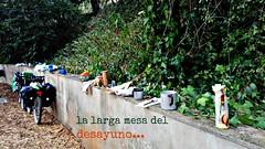 long breakfast table (L C L) Tags: algarve portugal bicicletas bikes desayuno breakfast tiendas tents camping camp loretocantero comida meals galletas cookies leche milk lcl salema