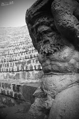 Teatro de Pompeya  (Carlos Leyva ) Tags: carlos leyva fotografa fotos foto picture pictures photography branding photographer fotgrafo design marca publicist publicista publicidad mercadeo marketing marketer booker manager advertiser viaje trip travel world italia italy pompeya pompei