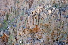 DSCF0094 (elmartin76) Tags: valles palau sentmenat path erosion water