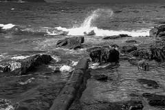 BS4R7704 (Damir Govorcin Photography) Tags: waves ocean manly beach sydney rocks canon 1dx horizon landscape natural light nsw australia 2470mm