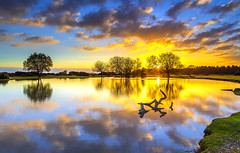One Hundred And Ten Seconds Earlier (nicklucas2) Tags: landscape janesmoor pond newforest cloud sun sunrise water tree reflection branch