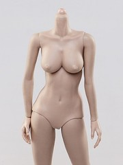 VERYCOOL TOYS VCF-X05B Female Caucasian Skintone Large Bust Body - 6__02293_zoom (Lord Dragon ) Tags: 16scale 12inscale onesixthscale actionfigure doll hot toys verycool female