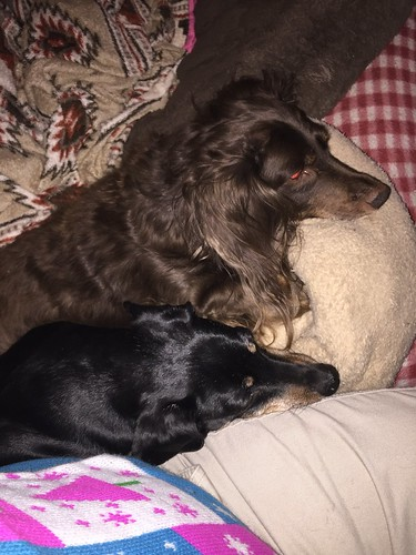 Link And Jimmy Dean