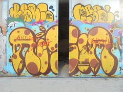 320 (en-ri) Tags: reser marrone giallo torino wall muro graffiti writing parco dora